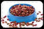Сухой корм и лакомства для собак
